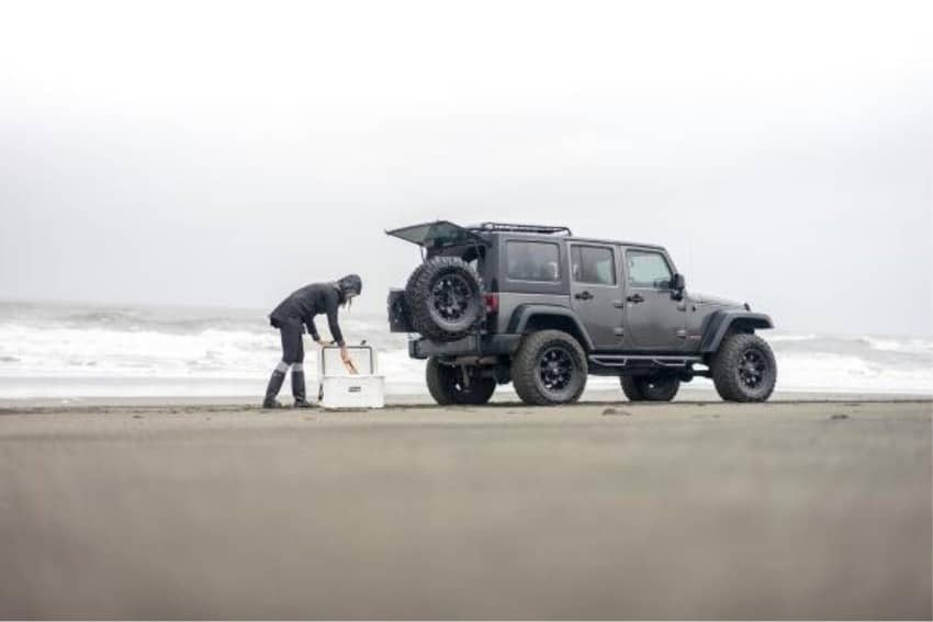 white grizzly 60 quart cool behind jeep on beach with woman reaching into cooler