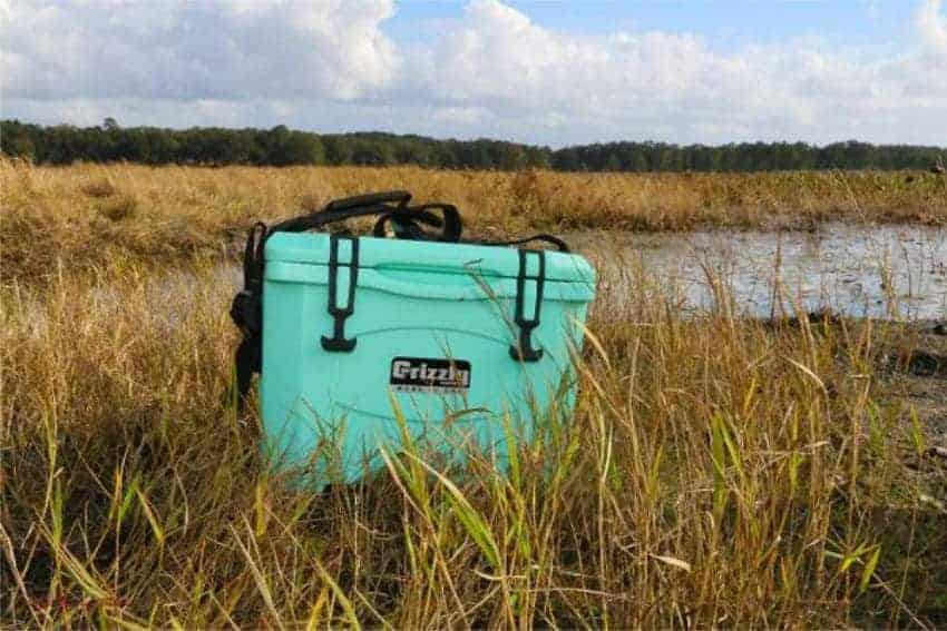 seafoam green 15 quart rotomolded cooler sitting in field