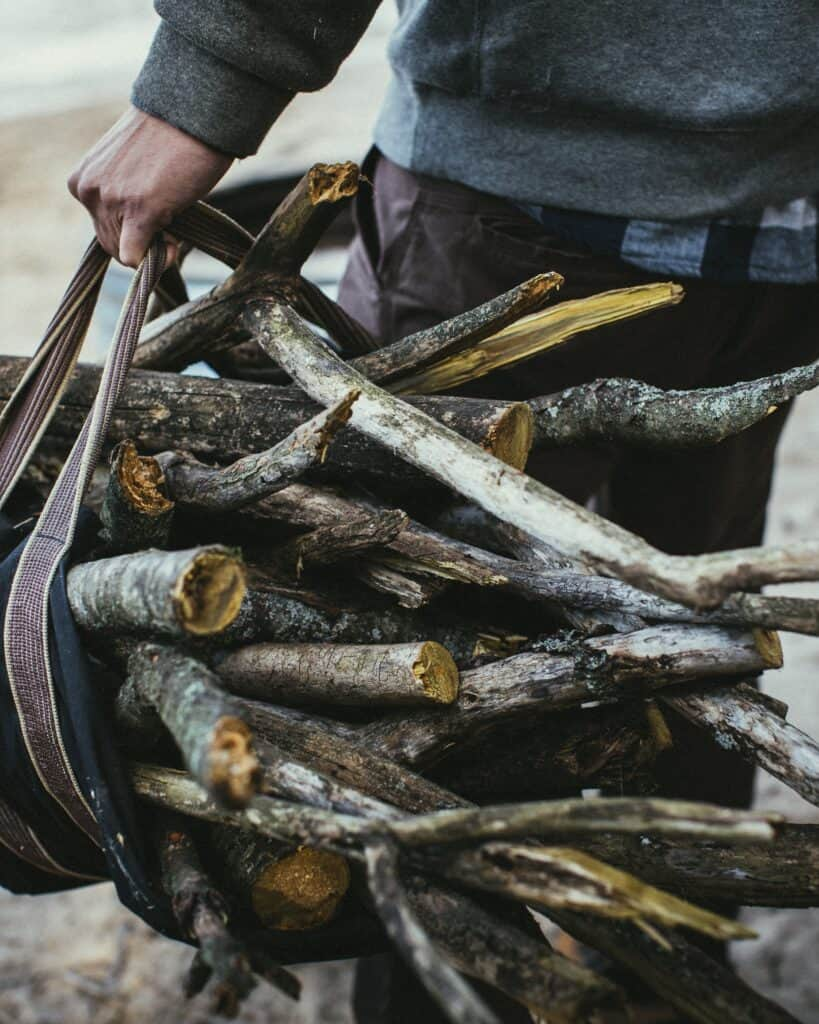 Collecting Firewood For Campfire Cooking