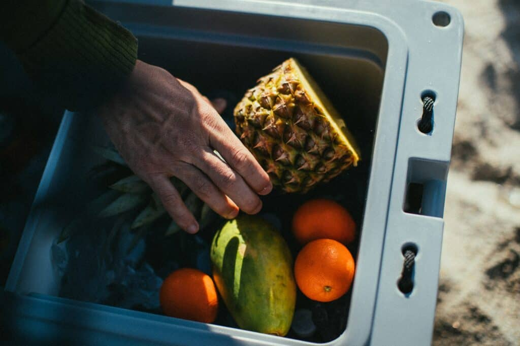 How To Keep Produce Fresh At Farmers Market