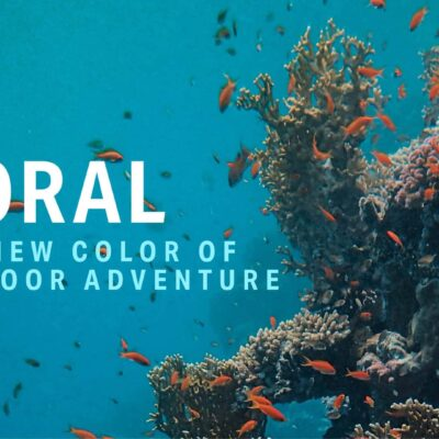 coral colored cooler