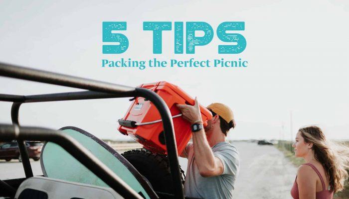 5 picnic tips